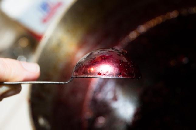 PomegranateChicken-5